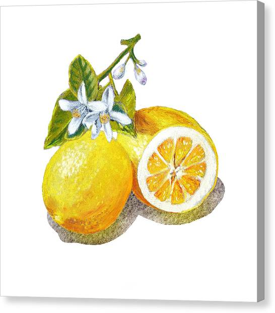 Lemons Canvas Print - Two Happy Lemons by Irina Sztukowski