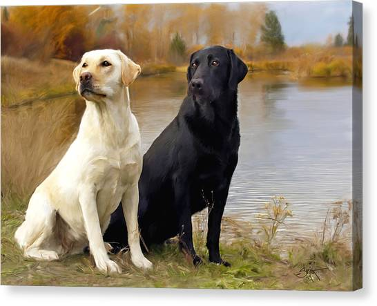 Two Labs Canvas Print
