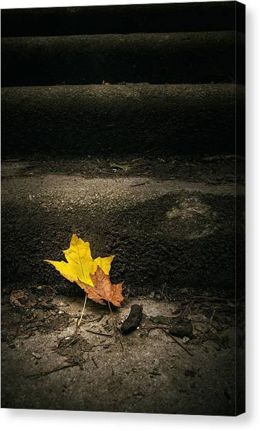 Maple Leaf Art Canvas Print - Two Leaves On A Staircase by Scott Norris