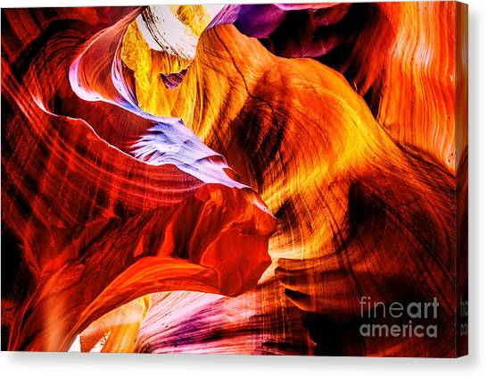 Two Lions Dance Canvas Print by Az Jackson