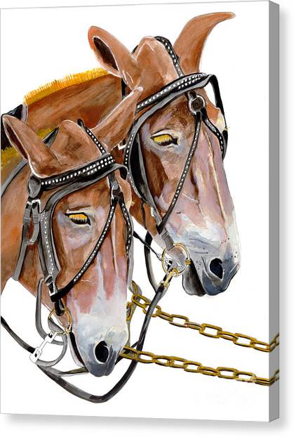 Two Mules - Enhanced Color - Farmer's Friend Canvas Print