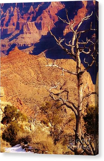 Two One Hundred Eighty Three Canvas Print by Debbie L Foreman