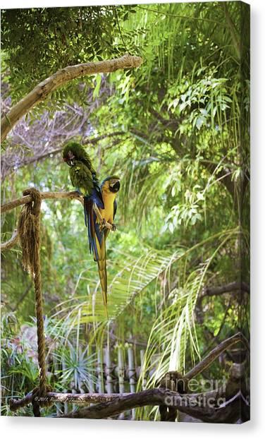 Two Parrots Canvas Print