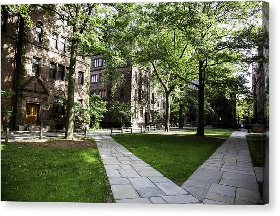 Yale University Canvas Print - Two Paths Diverge - Yale Campus by Madeline Ellis