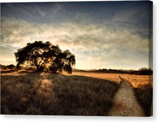 Big Sky Canvas Print - Two Paths by Peter Tellone