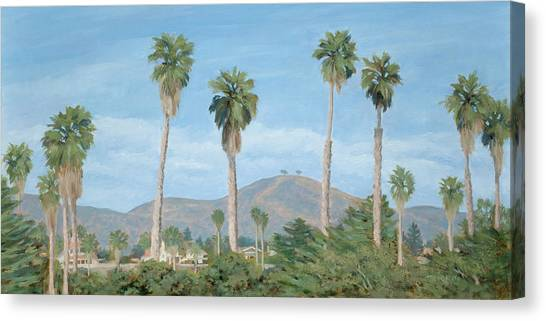 Two Tree's From Ventura State Park Canvas Print by Tina Obrien