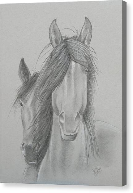 Two Wild Horses Canvas Print