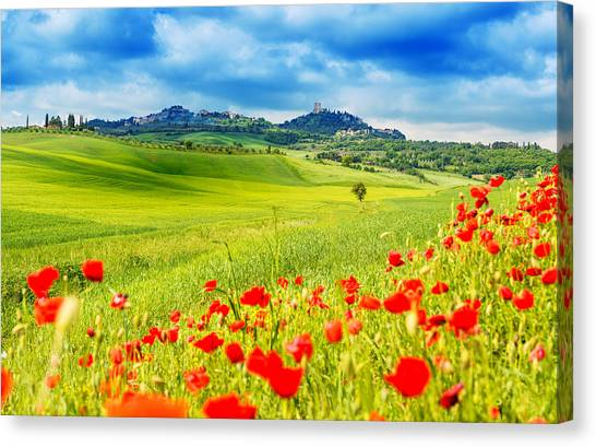 Typical Landscape Of Tuscany Canvas Print by Gehringj
