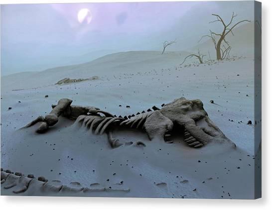 Steak Canvas Print - Tyrannosaurs Rex Skeleton by Mark Garlick/science Photo Library