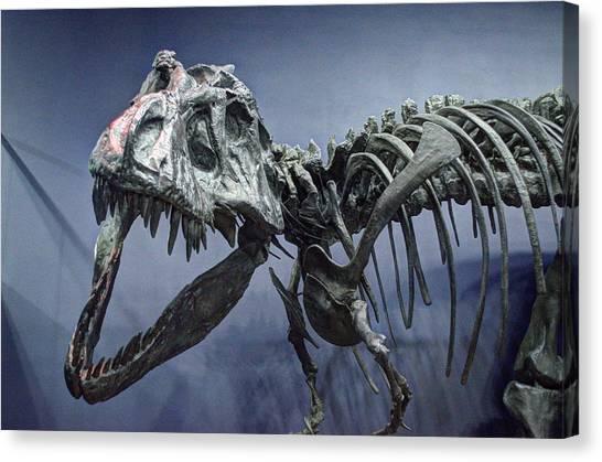 Tyrannosaurus Jane Canvas Print