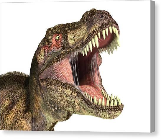 Tyrannosaurus Canvas Print - Tyrannosaurus Rex Dinosaur by Leonello Calvetti