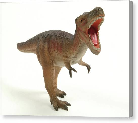 Tyrannosaurus Canvas Print - Tyrannosaurus Rex Dinosaur Model by Natural History Museum, London/science Photo Library