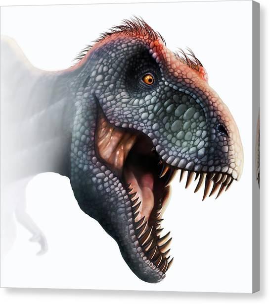 Tyrannosaurus Canvas Print - Tyrannosaurus Rex Head by Mark Garlick