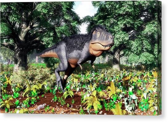 Salamanders Canvas Print - Tyrannosaurus Rex by Walter Myers/science Photo Library