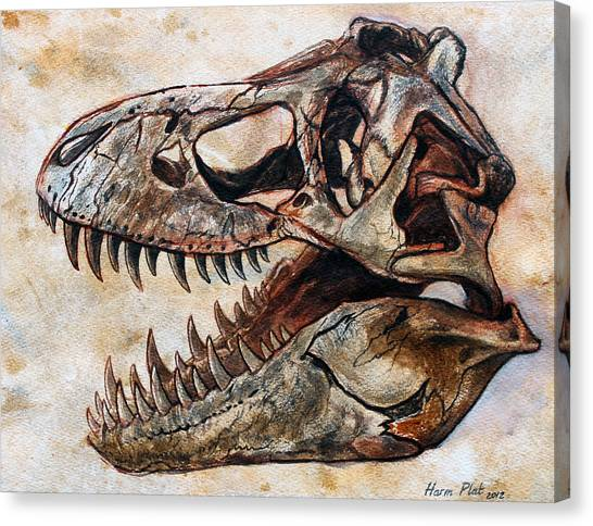 Tyrannosaurus Canvas Print - Tyrannosaurus Skull 2 by Harm  Plat