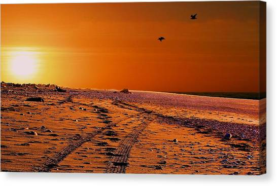 Tyre Tracks At Sunset Canvas Print
