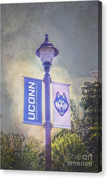 University Of Connecticut Canvas Print - Uconn Huskies Light Pole by Steve Pfaffle