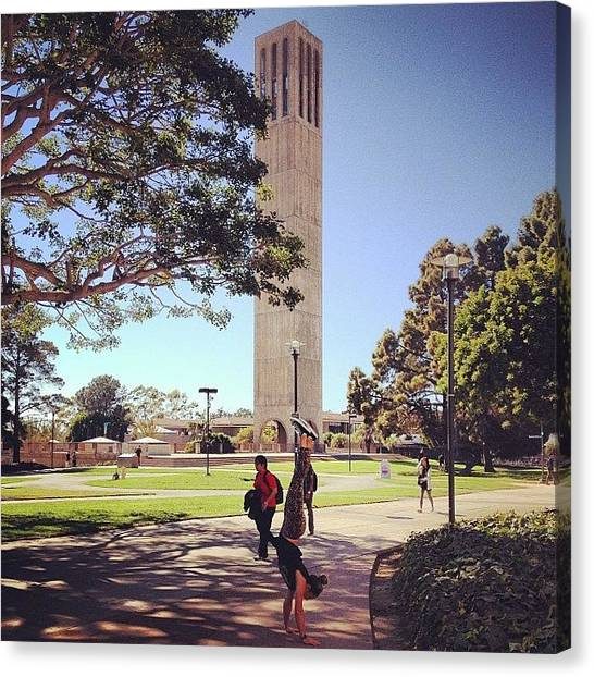 Ucsb Canvas Print - Ucsb #handstand Chronicles - In Front by Mckenzie Kane