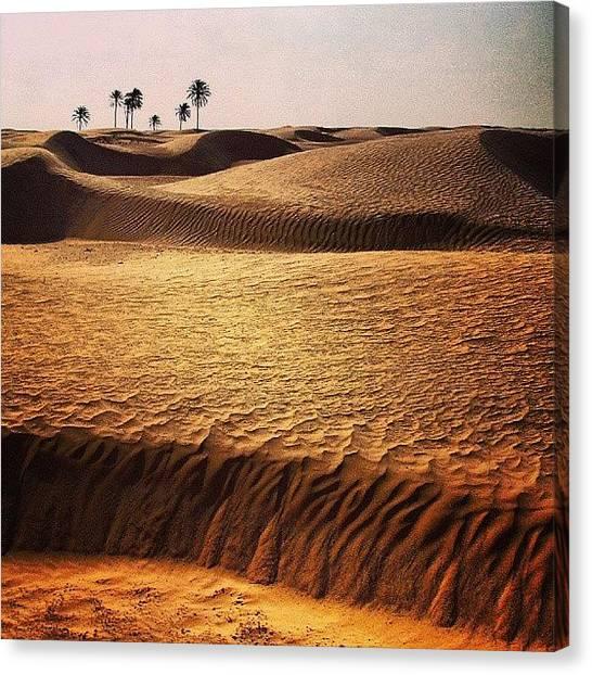 Sahara Desert Canvas Print - Un Peu De Chaleur En Ce Début by Bastien Crq