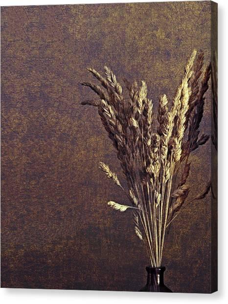 Unassuming  Canvas Print by Bob RL Evans