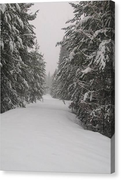 Unbroken Trail Canvas Print