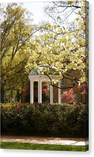 University Of North Carolina Chapel Hill Canvas Print - Unc-ch Old Well And Dogwoods by Orange Cat Art