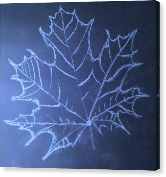 Uncertaintys Leaf Canvas Print