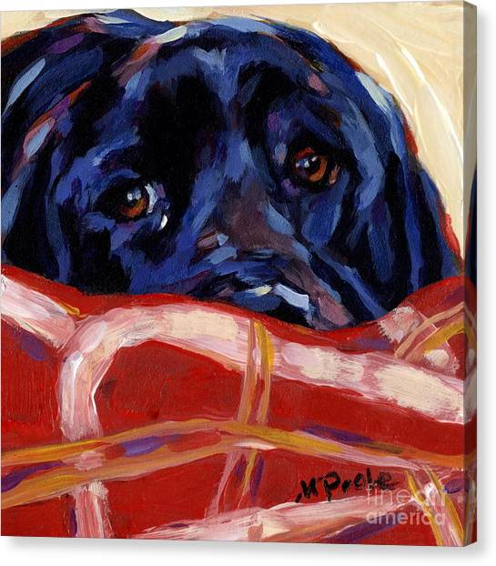 Labrador Retrievers Canvas Print - Under Cover by Molly Poole
