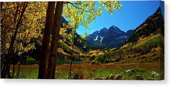 Under Golden Trees Canvas Print