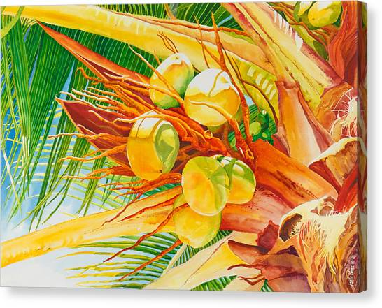 Coconut Canvas Print - Under The Coconut Palm by Janis Grau
