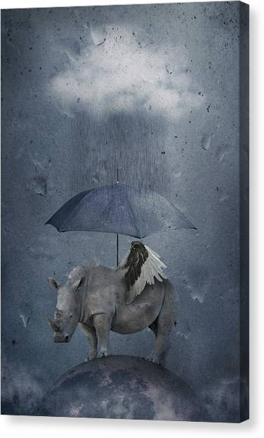 Rhinos Canvas Print - Under The Rain by Muriel Vekemans