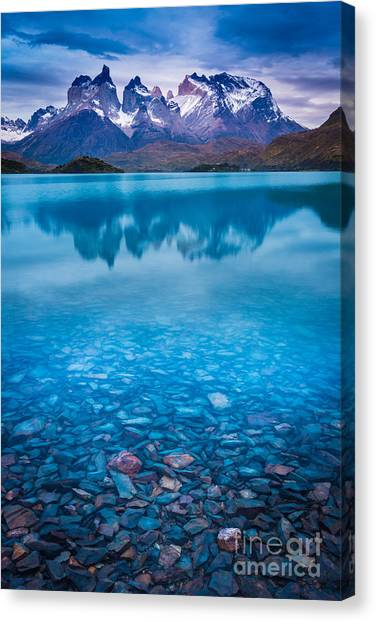 Chilean Canvas Print - Underneath The Surface by Inge Johnsson