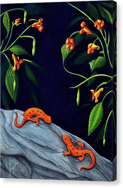 Newts Canvas Print - Understory by Danielle R T Haney