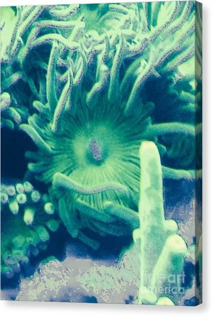 Underwater Life Canvas Print by Marlene Williams