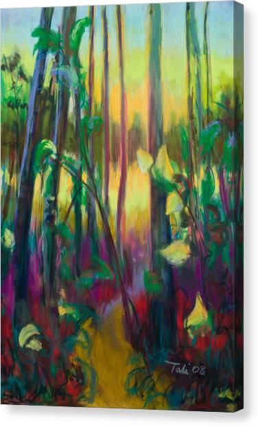 Unexpected Path - Through The Woods Canvas Print