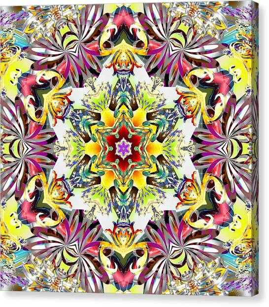 Unfolded Source Canvas Print