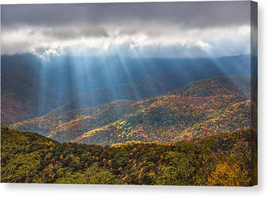 Unfurled Autumn Splendor Canvas Print