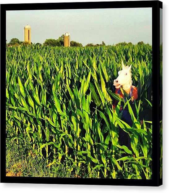 Popcorn Canvas Print - Uni Corn. O^o 🐎🌈🌽 #unionmycob by The Traveling Unicorn