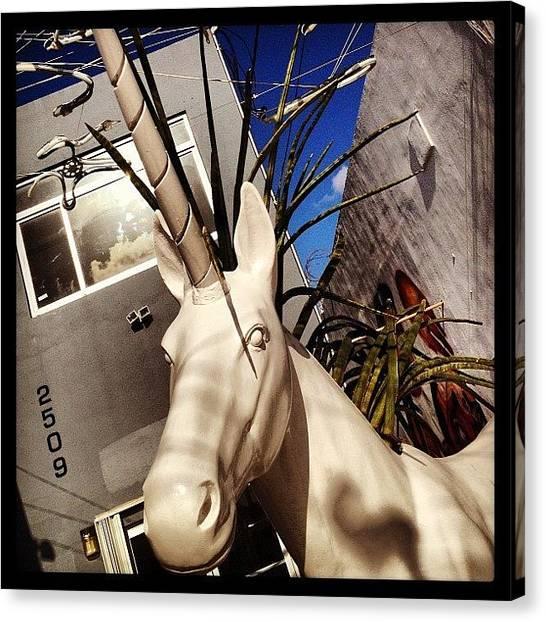 Unicorns Canvas Print - #unicorn #sculpture #art #white #miami by Anamaris Cousins Price