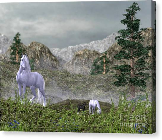 Unicorns In The Mountains Canvas Print