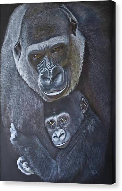 Canvas Print - United - Western Lowland Gorillas by Jill Parry