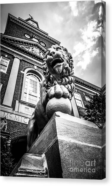 Aac Canvas Print - University Of Cincinnati Lion Black And White Picture by Paul Velgos