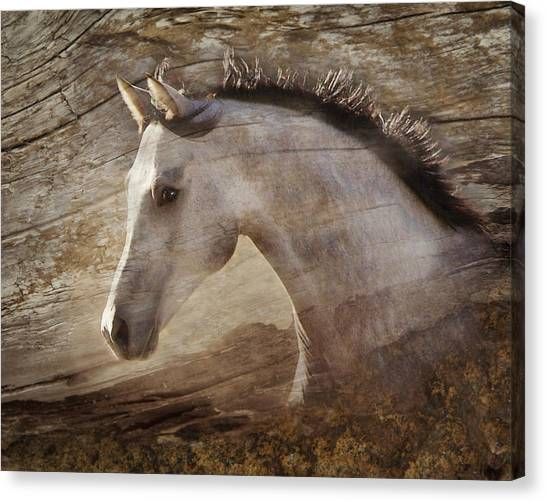 Canvas Print featuring the photograph UNO by Melinda Hughes-Berland