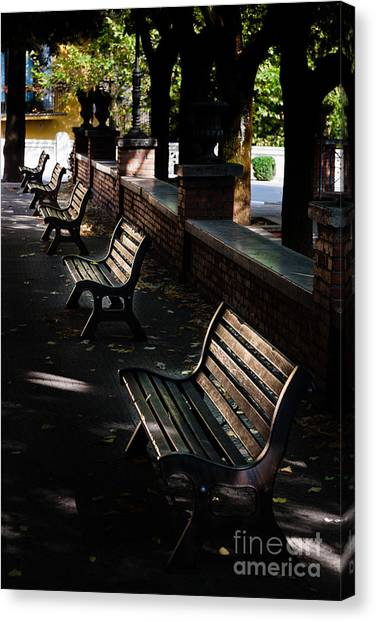 unoccupied park benches in the shade of trees in Palestrina Canvas Print