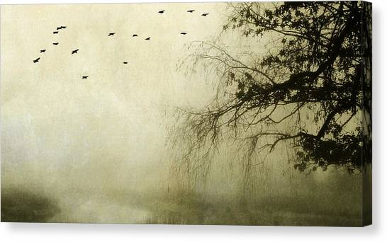 Unspoken Canvas Print