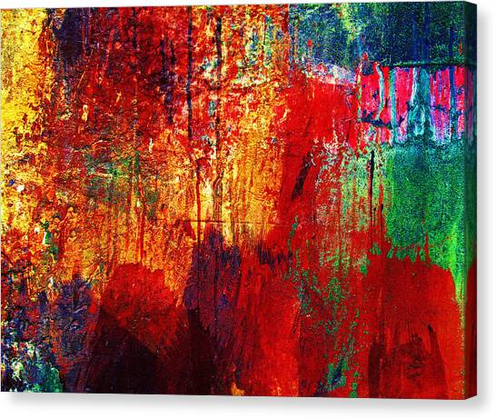 Untamed Colors  Canvas Print