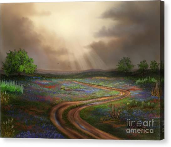 Untamed Country Canvas Print