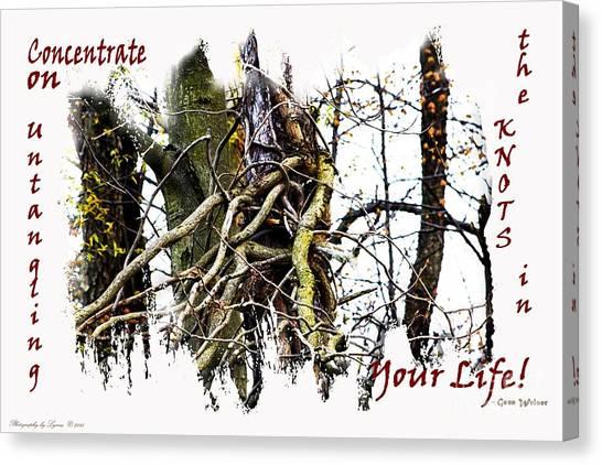 Untangle Your Knots Canvas Print