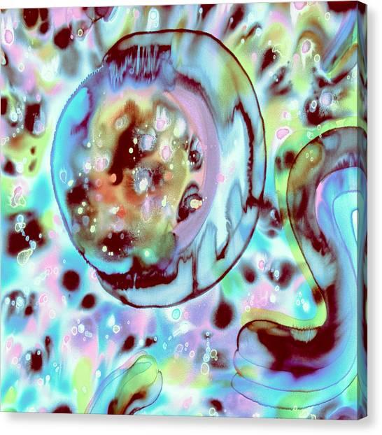 Sublime Oracle Canvas Print