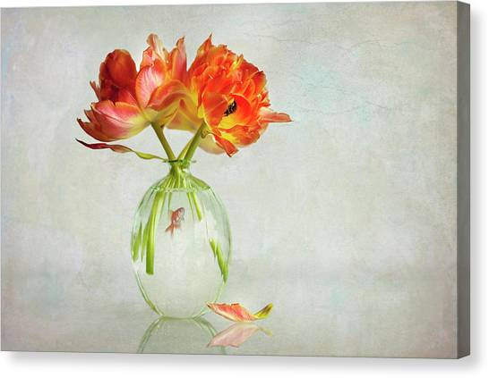 Goldfish Canvas Print - Untitled by Alida Van Zaane